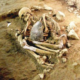 Els nostres avantpassats a través de les seves restes
